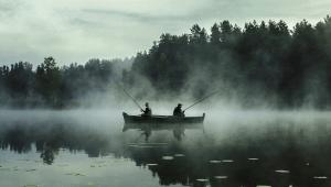 Norfa – Žuvys